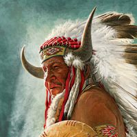 Indianer - Western T-Shirts