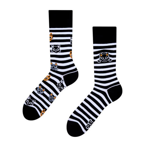 Lustige Katzen Socken Cats and Stripes